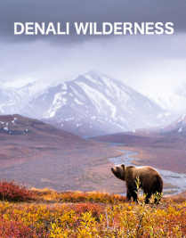 Watch Denali Wilderness